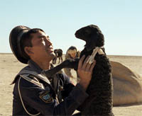Tulpan, film kazakh